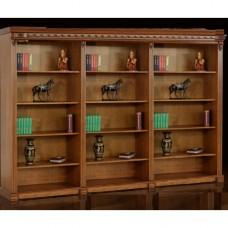 Библиотека Мебус Галиция 3